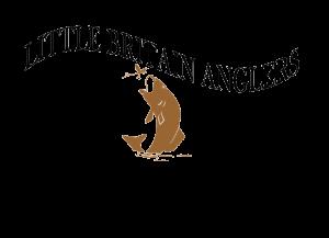 LBA new logo transparent 2